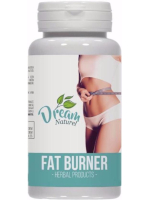 Dream-Naturel-Fat-Burner
